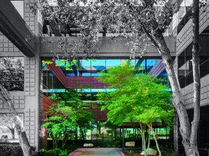 """השקעות נדל""""ן בטקסס - בניין משרדים קלאס B"""